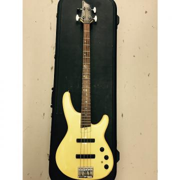 Custom Fender Heartfield DR4
