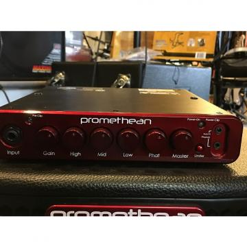 Custom Ibanez Promethean P300H