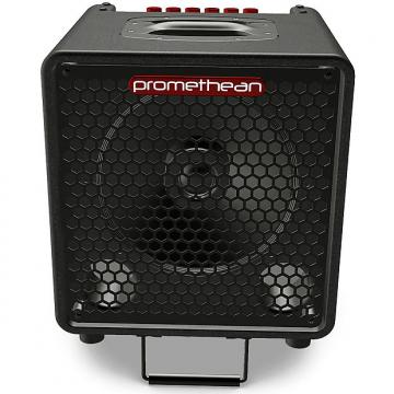 Custom Ibanez P3110 Promethean 300 Watt Bass Combo