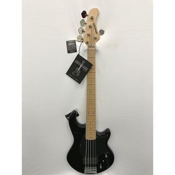 Custom Fernandes Atlas 5X  Electric Bass - Black