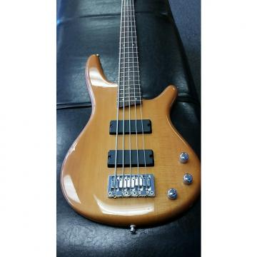 Custom Ibanez sr 305dx bass