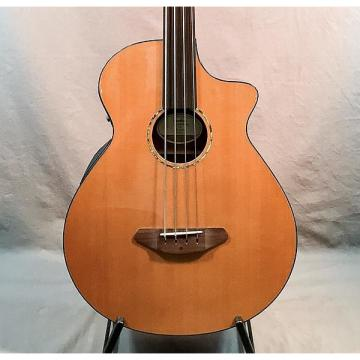 Custom Breedlove Solo Fretless Acoustic Bass