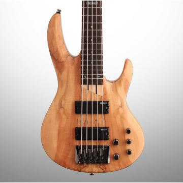 Custom ESP LTD B205SM Electric Bass, 5-String, Natural Satin