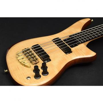 Custom Alembic Epic 5