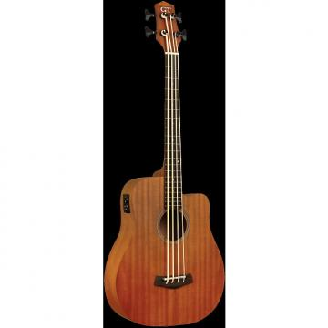 "Custom GOLD TONE MicroBass M-Bass 25"" scale FRETLESS 4-string A/E BASS guitar w/GIG BAG"