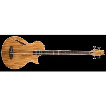 Custom ESP LTD TL-4Z Thinline Series Acoustic Electric Bass Guitar Zebrawood Natural Transducer w/ Fishman Pickup Preamp LTL-4ZNAT