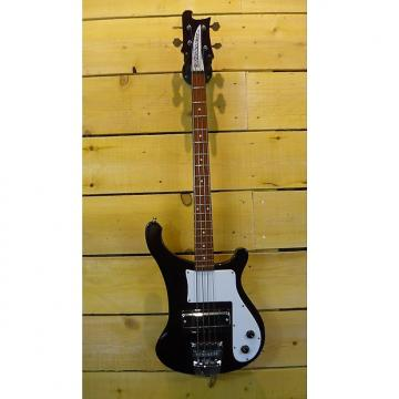 Custom Rickenbacker Bass 4000