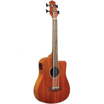 Custom Gold Tone M-Bass Fretless Acoustic Electric MicroBass incl Gig Bag