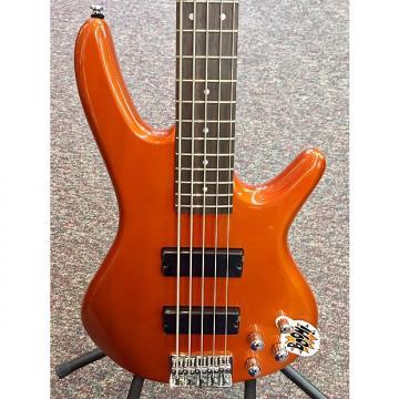 Custom Ibanez GSR205 5-String Electric Bass Guitar