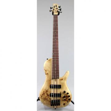 Custom Store Demo | Ibanez SRSC805 5-String Workshop Series Bass Guitar - Natural Flat