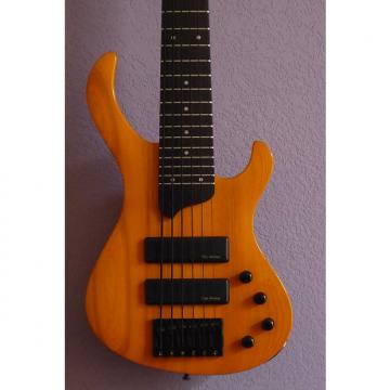 Custom Esh Various 2001 Pumpkin Orange
