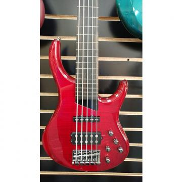 Custom Michael Tobias MTD Kingston Heir 5 String Fretless - Trans Cherry