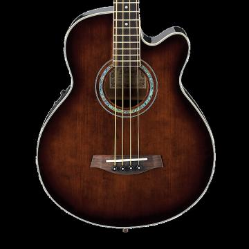 Custom Ibanez AEB10E Acoustic Bass - Dark Violin Sunburst