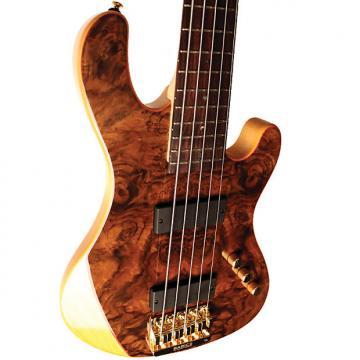 Custom Cort Rithimic V Jeff Berlin 5-String Bass