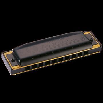 Custom Hohner Pro Harp 10-Hole Harmonica - D Flat