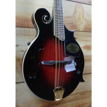 Custom Washburn M3SWETWRK Acoustic Electric F-Style Mandolin Trans Wine Red w/Case