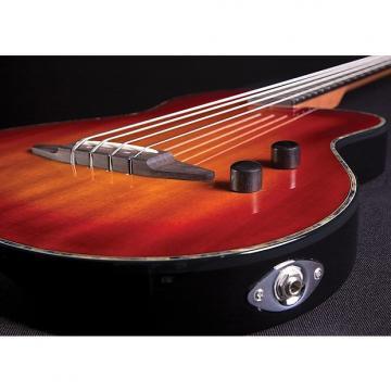 Custom Michael Kelly Rick Turner B4 Bass High Gloss Sunburst