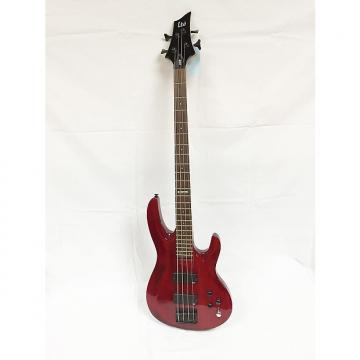 Custom ESP LTD B-104 Electric Bass