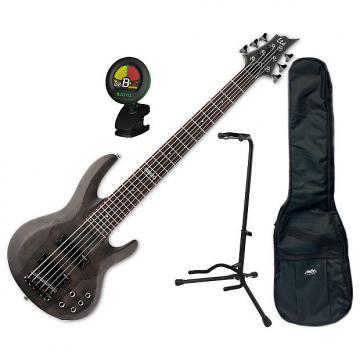 Custom ESP LTD B-206SM STBLKS 6-String Electric Bass Bundle