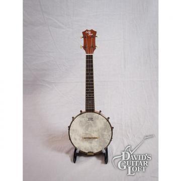 Custom Eddy Finn EF-BU1 Soprano Resonator Banjolele Banjo Ukulele w/Gig Bag