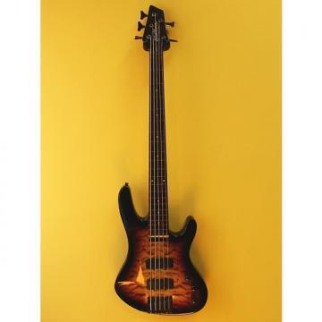 Custom Washburn XB125 Fretless 5-string electric bass guitar Custom