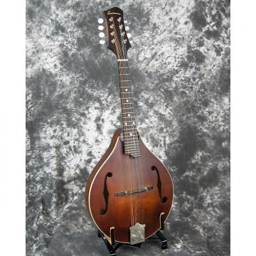 Custom Brand new Eastman MD-305 A-style mandolin
