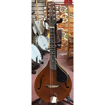 Custom Kentucky KM-252 Deluxe A-model Mandolin – Transparent Amber