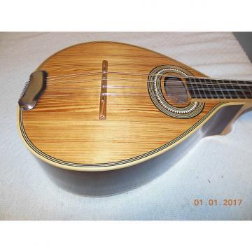 Custom Unknown Mandolin Mandola 10 string Anitique Natural UNIQUE!