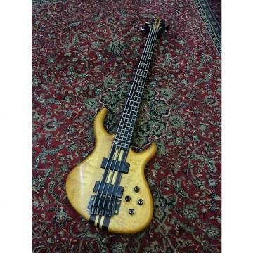 Custom Tobias Toby Pro 5 string Bass w/gig bag