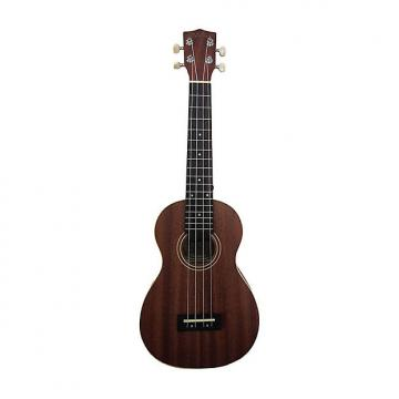 Custom Halona UKC-20 Concert Ukulele with Gig Bag