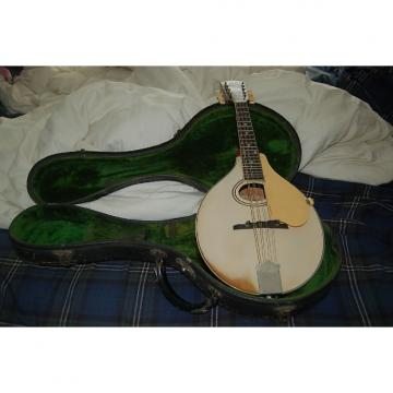 Custom Gibson A3 Mandolin 1919 White Top, Wine back and sides