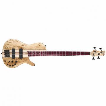 Custom Ibanez SRSC800 Natural Flat NTF SR Cerro Bass Workshop New Electric Bass