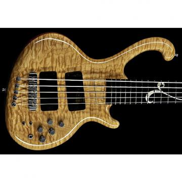 Custom Ritter Roya 5-String Bass - Quilted Maple Top - Wynn Inlay (Solid Silver)
