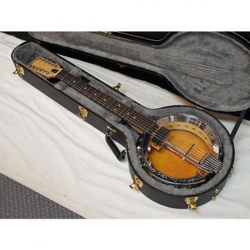 Custom GOLD TONE GT-1200 acoustic electric 12-string BANJITAR Banjo GUITAR new w/ CASE