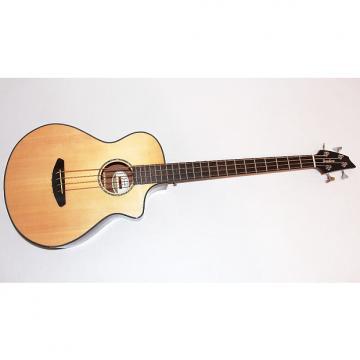 Custom Breedlove Pursuit Acoustic Electric Bass Guitar