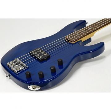 Custom ESP AP See Through Blue