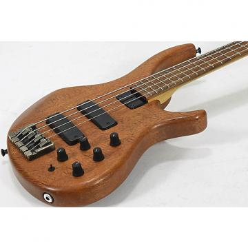 Custom Tobias Killer Bass 4ST