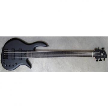 Custom Elrick Expat Handmade e-volution 5-String Bass Guitar, Satin Black Finish, Gabon Ebony Fretless Fb