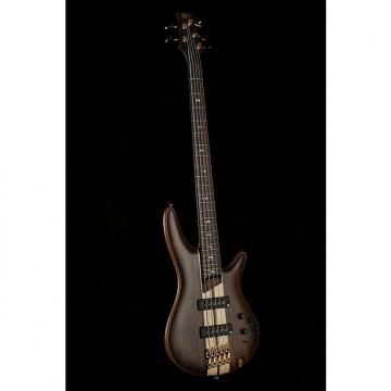 Custom Ibanez SR1805 Premium Bass 5Stg W/Soft H/Cas
