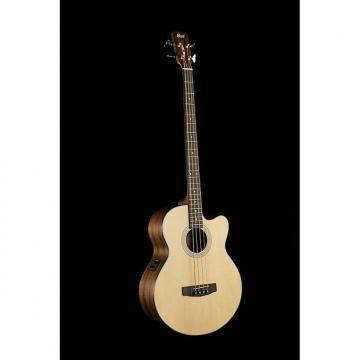 Custom Cort SJB5 Acoustic Bass
