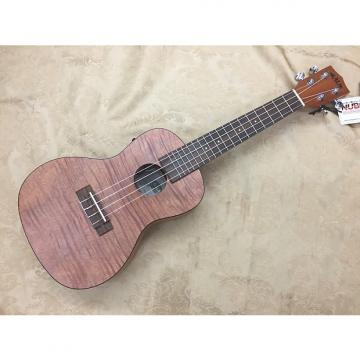 Custom Kala-Exotic Mahogany Series-Concert Ukulele-KA-CEME-Acoustic/Electric-NEW-Nice!