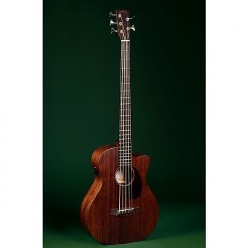 Custom Sigma Bmc 155E 5 String Acoustic Bass