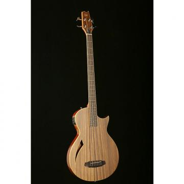 Custom LTD TL-4Z Thinline Bass