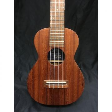 Custom Lanakai  Kaeana
