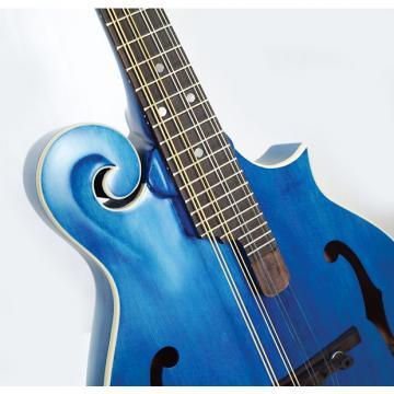 Custom Morgan Monroe MM-300BL F-Style Mandolin Blue