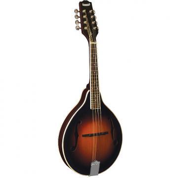 Custom Morgan Monroe MM-100AM A-Style Mandolin