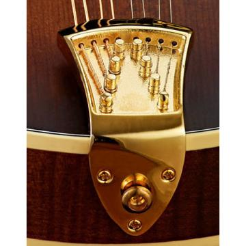 Custom NEW Complete Ashton Bailey AB-TP/G Gold Mandolin High mass Tailpiece w/ Matching Strap Pin & Screws