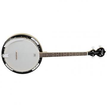Custom Tanglewood TWB-18-M4 4-String Banjo