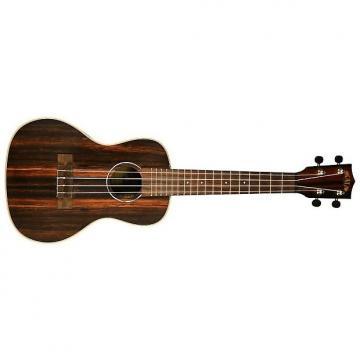 Custom Kala KA-EBY-C Ebony Concert Ukulele