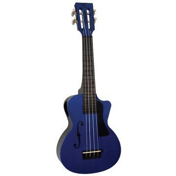 Custom Eddy Finn Beach Master Concert Ukulele Blueberry